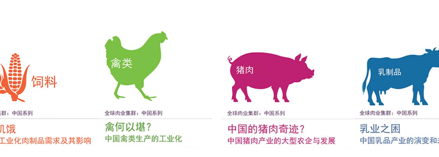 China meat series covers