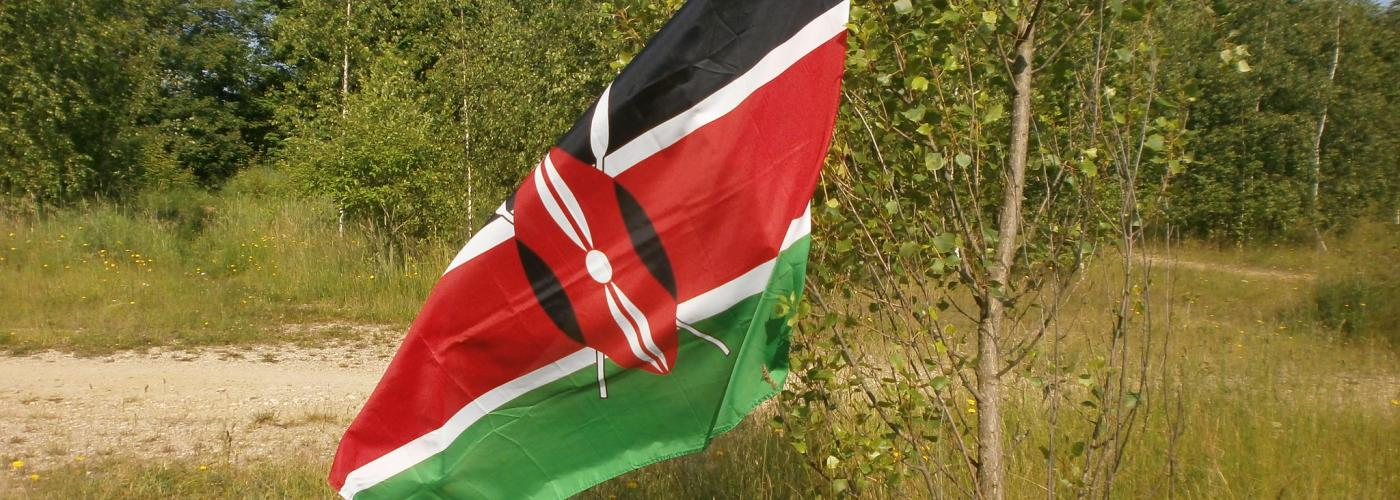 Kenyan flag in field