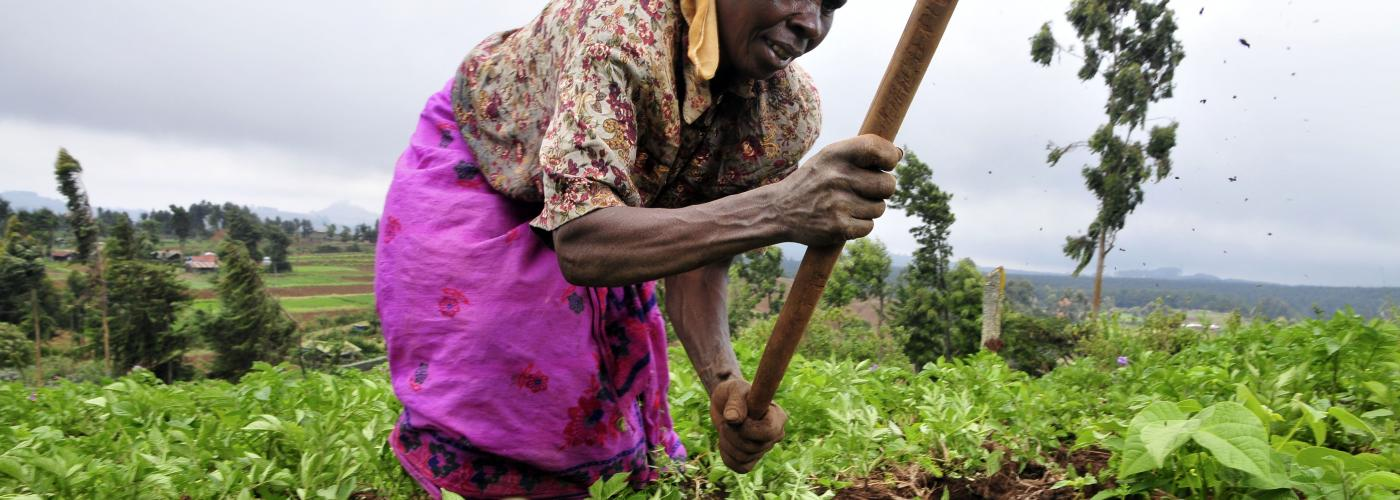 """Replacing hunger with malnutrition"": Former UN official calls out failing African Green Revolution"