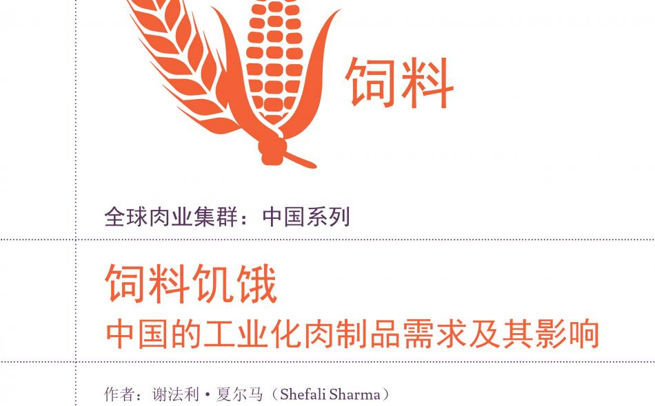 China meat reports on feed