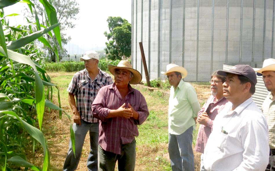 Agroecological farmers