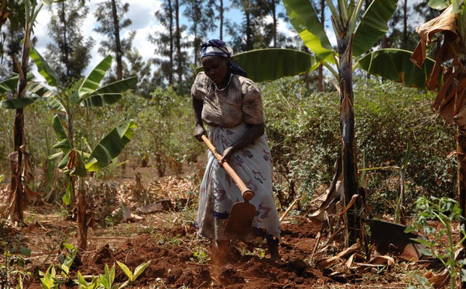 Land Grabs and Fragile Food Systems