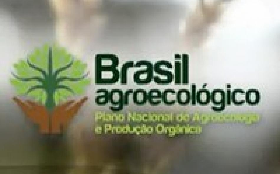Final Day at the FAO Regional Agroecology Seminar in Brazil – The Struggle Ahead