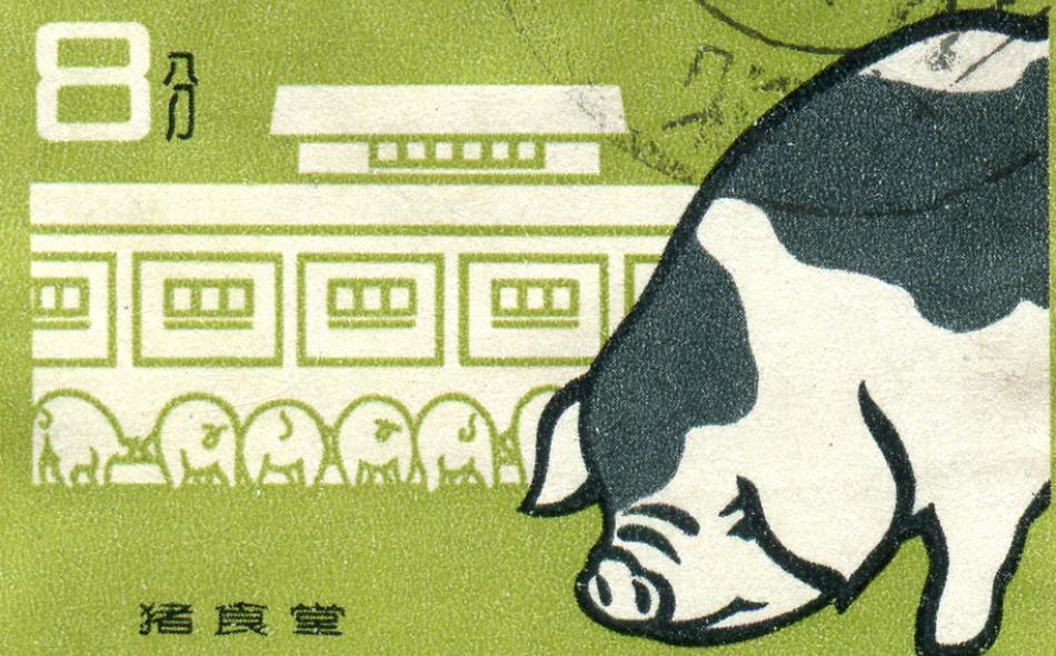 Feeding China's Pigs: Implications for the Environment, China's Smallholder Farmers and Food Security