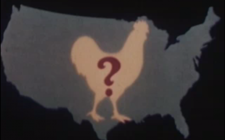 How the Chicken of Tomorrow became the Chicken of the World