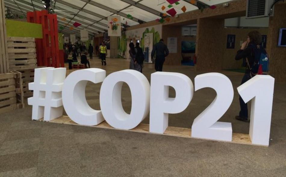 "Don't talk about ""trade"" at the global climate talks"