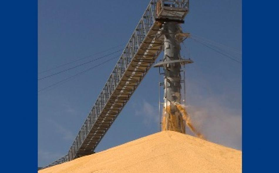 IATP releases Grain Reserves and the Food Price Crisis