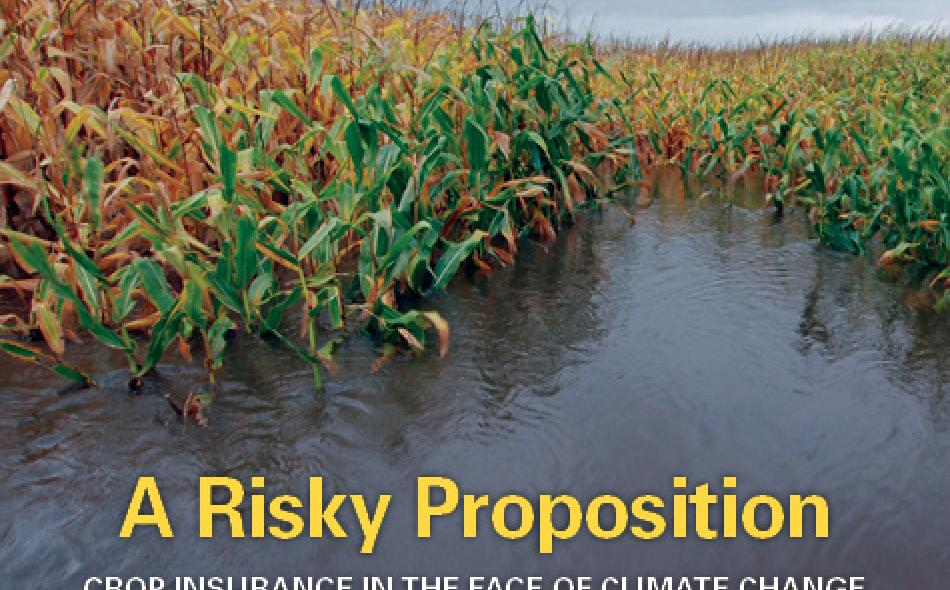 A Risky Proposition: Crop Insurance in the Face of Climate Change