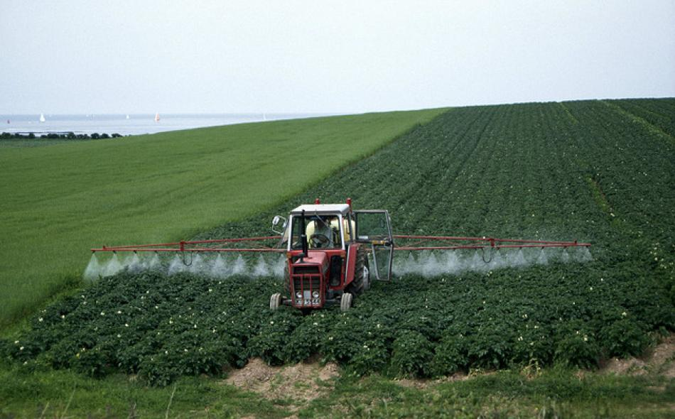 Pesticides; Policies Concerning Products Containing Nanoscale Materials