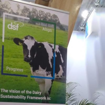 Dairy Sustainability Framework
