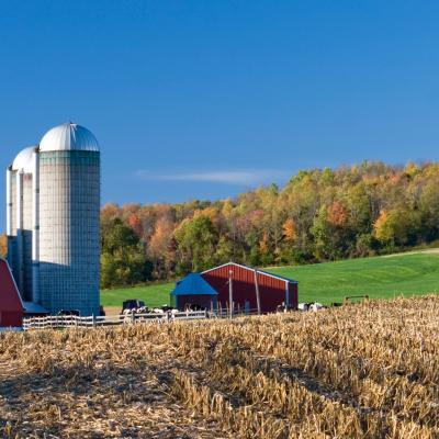 "New NAFTA"" puts the brakes on farm policy reforms 
