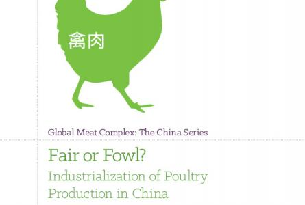 Fair or Fowl? Industrialization of Poultry Production in China