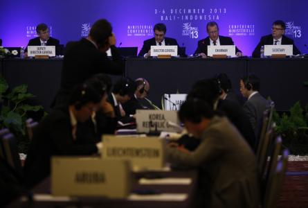 WTO Ministerial (2013