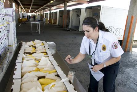FDA food inspection