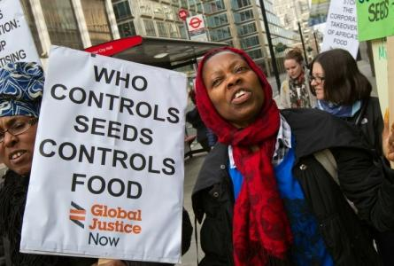 Free the Seeds Global Justice Now